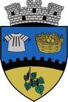 stema Topoloveni