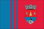 proiect steag Borşa