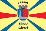 proiect steag Târgu Lăpuş